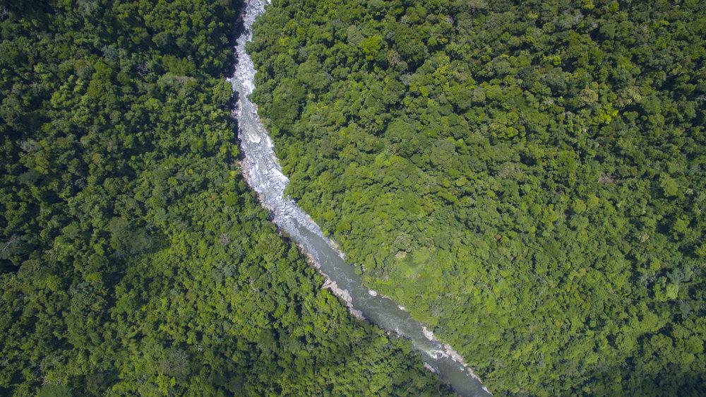 El canon selvatico del Rio Samana, Jules Domine.jpg