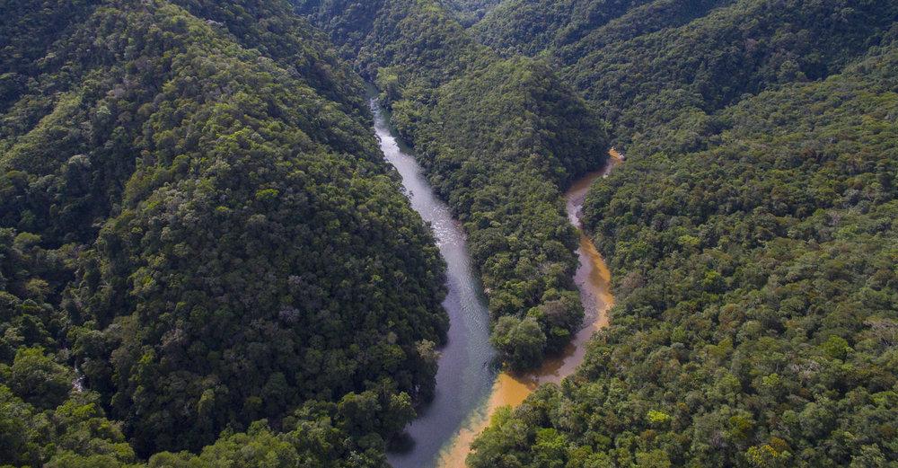 Unos de los lugares los mas bellos de Colombia, Rio Samana, Jules Domine.jpg