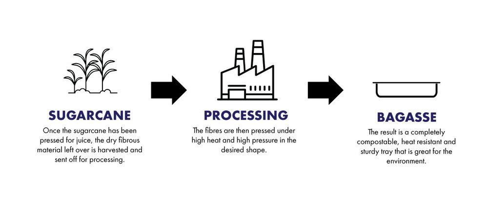bagasse-infographic.jpg