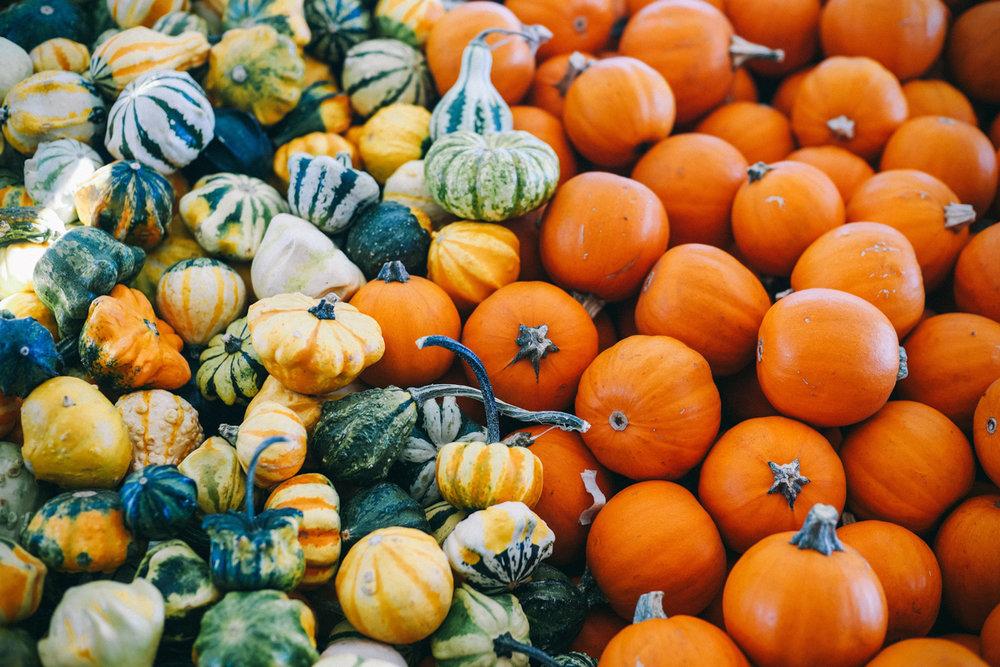 pumpkin-lifestlye.jpg