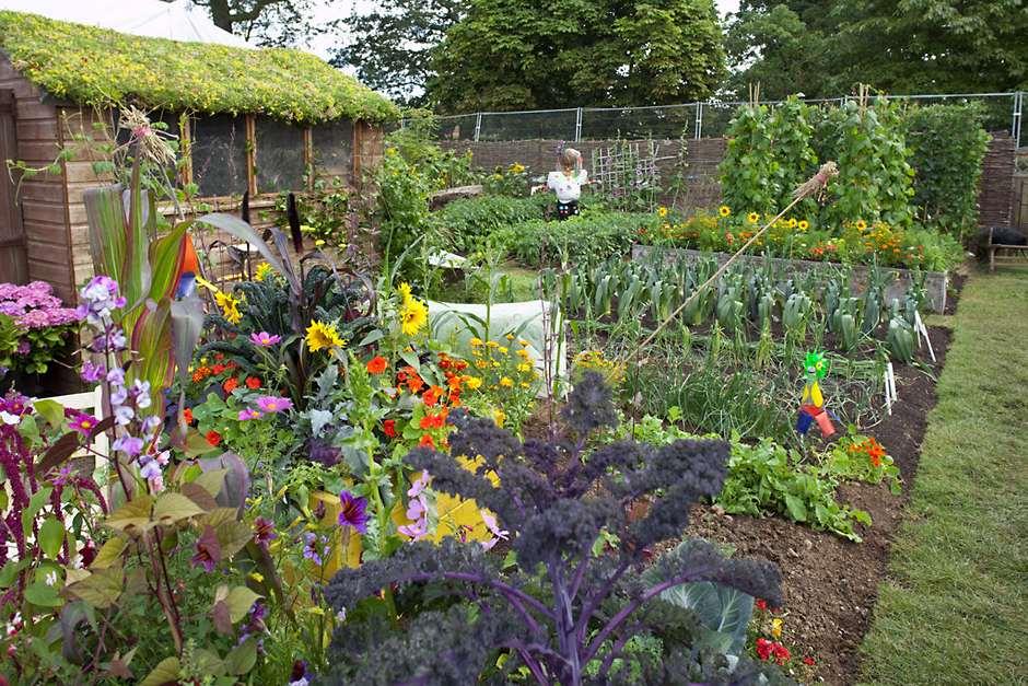 Gardening is good for you helen williams garden designer for Gallery garden designs best of 2010