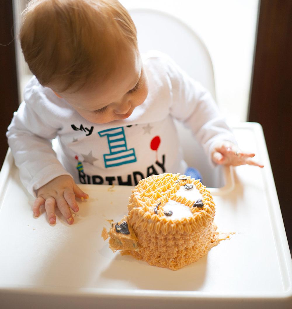 Liams First Birthday-18.jpg