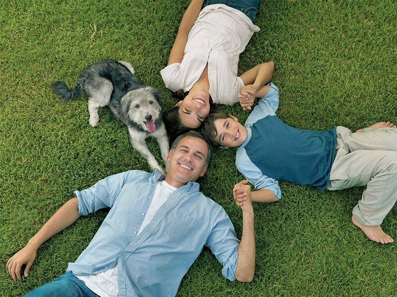 11-dog chow 2011_Page_6.jpg