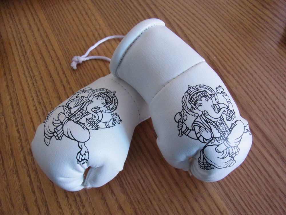 Ganesh Gloves.jpg