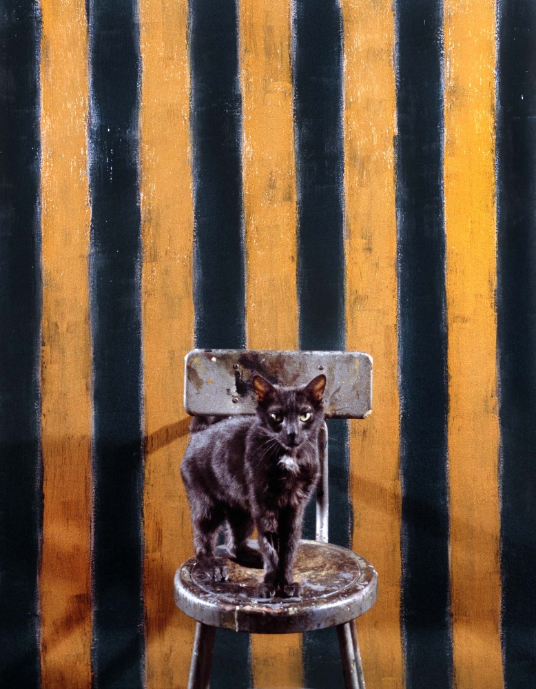 Bobo & painting by                                   Sean Scully