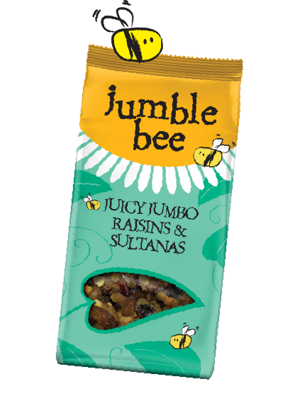 OUR JUMBLES - forest-07.png