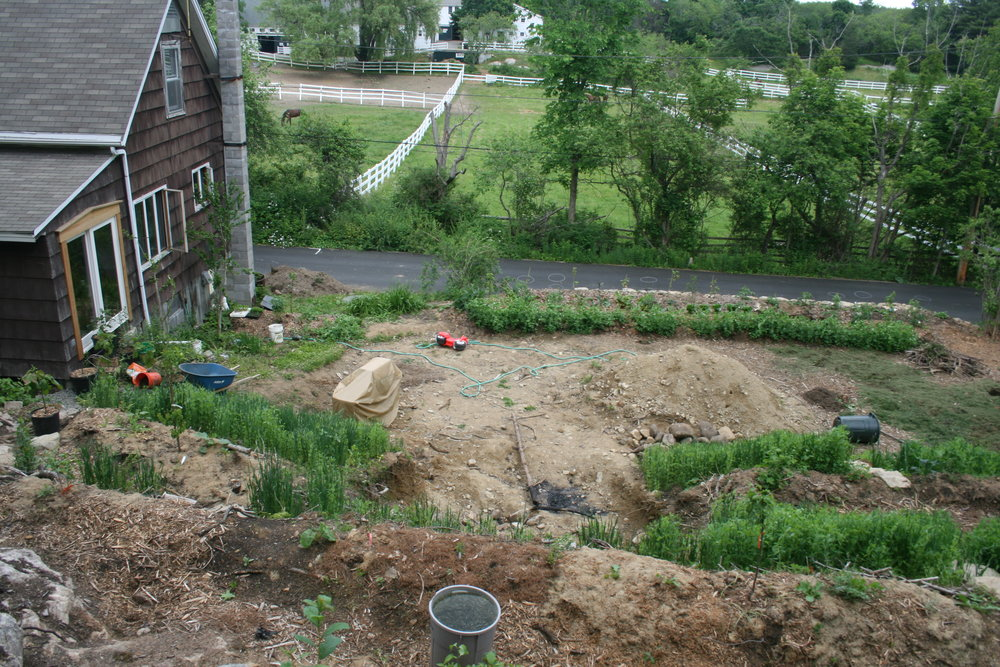 June 2016.  Slopes have already been terraced, most of this space is a construction zone for the root cellar. You can see the two huglekultur rows by the wall near the road are newly planted (the snap peas that are vining on the ground in front of them are more substantial than the tiny trees and shrubs.