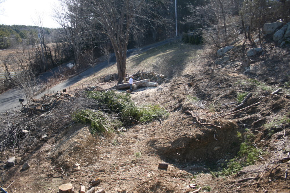 February 2016  Finished clearing the area, pilling brush to burn, cutting up logs. beginnings of the root cellar (later we will determine in needs to get further dug out and Johnny and I will d that over the course of a weekend in November by hand.) Slope have been freshly terraced. Next few images from same work day.