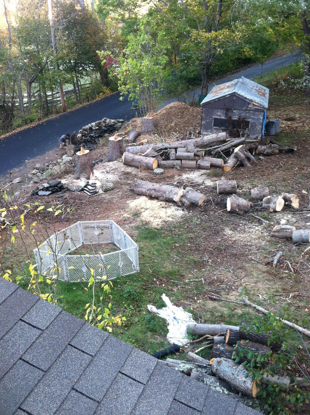 """October 2015  Johnny rebuilding the wall along the road, instead of a very low 1 ft wall, this will be a five foot wall, along the back to be flat, instead of sloping down to the road. Huge spruces are down, but stumps are still sticking up, later they will be cut down to below grade and are where the second hugelkultur bed now is. Giant wood chip pile that we will use everywhere. Log and brush piles everywhere. Separating out wood to split for indoor firewood and outdoor firewood. Rotting shed full of old trash and rodent awaiting to be removed. And lastly we borrowed a kid """"play pin"""" from a friend as an attempt to keep Anna (who was just over 1) contained and safe from the hazards of our projects…turns out she didn't like being put in a cage…go figure."""