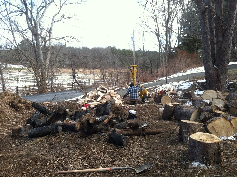 March 2016  There was a lot of time spend splitting wood, mostly by hand, but one day our neighbor lent us his splitter and boy, did that speed things up.