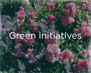 portfolio_greeninitiatives.png