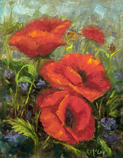 Poppy Morning 14 x 11