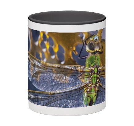 dragonfly-black2.jpeg