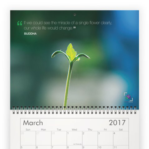 Chronic Quotes Wall Calendar 2017  /  $25