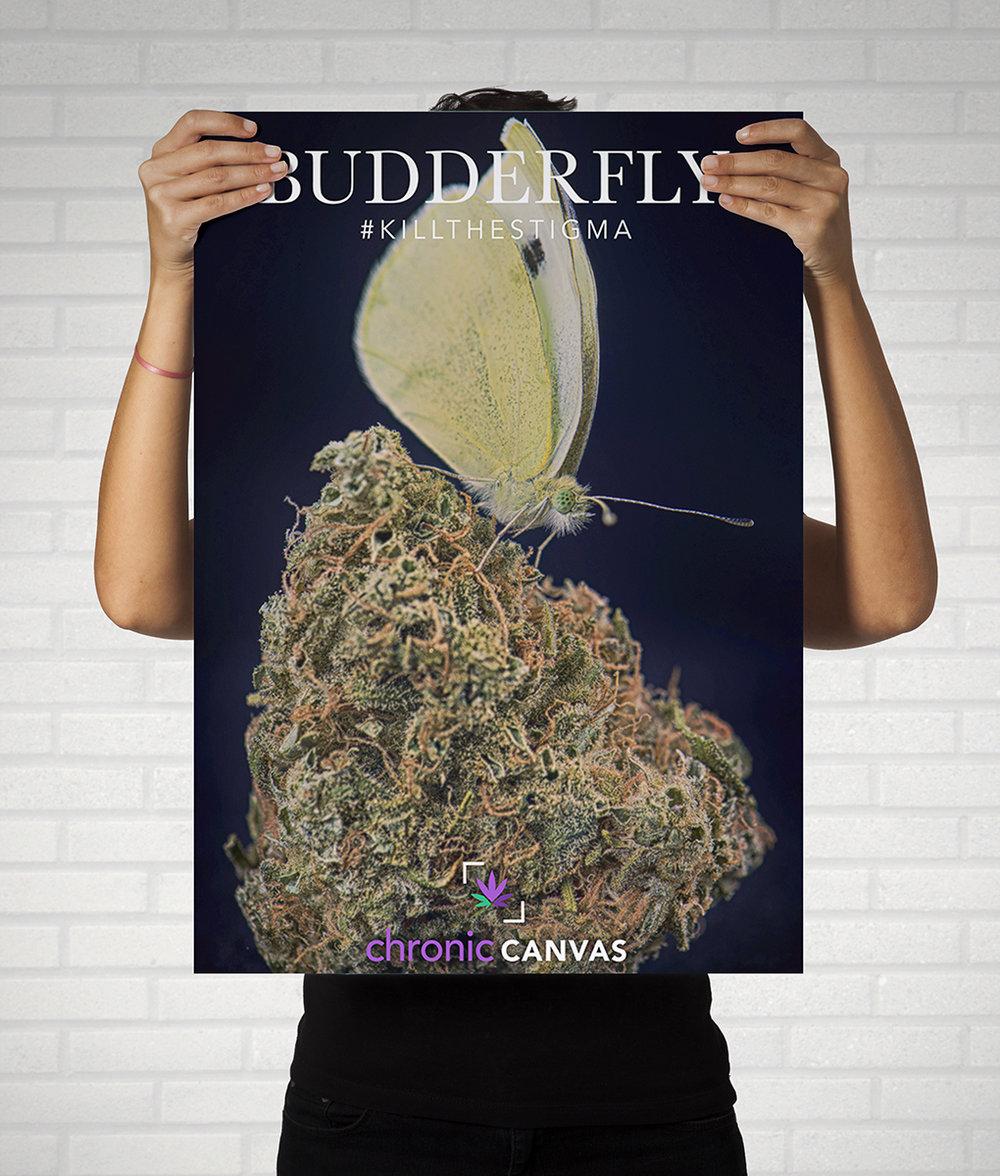 poster-budderfly-mockup.jpg