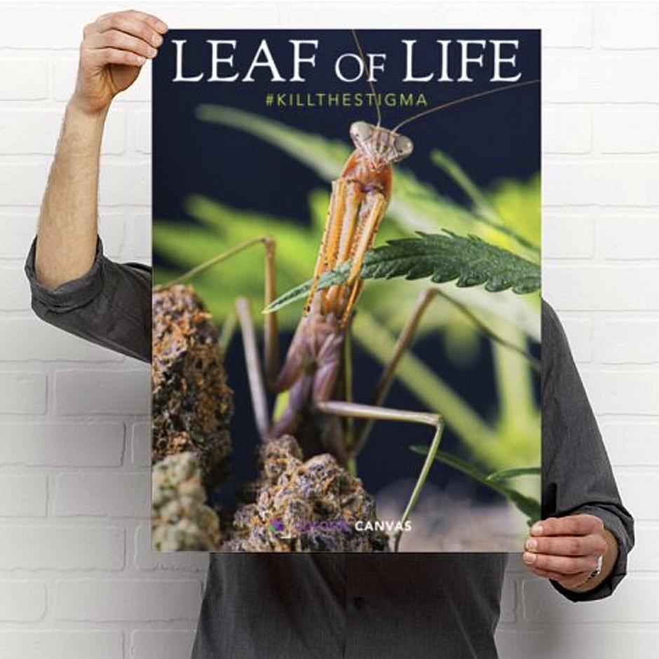 leaf-of-life-poster.jpg