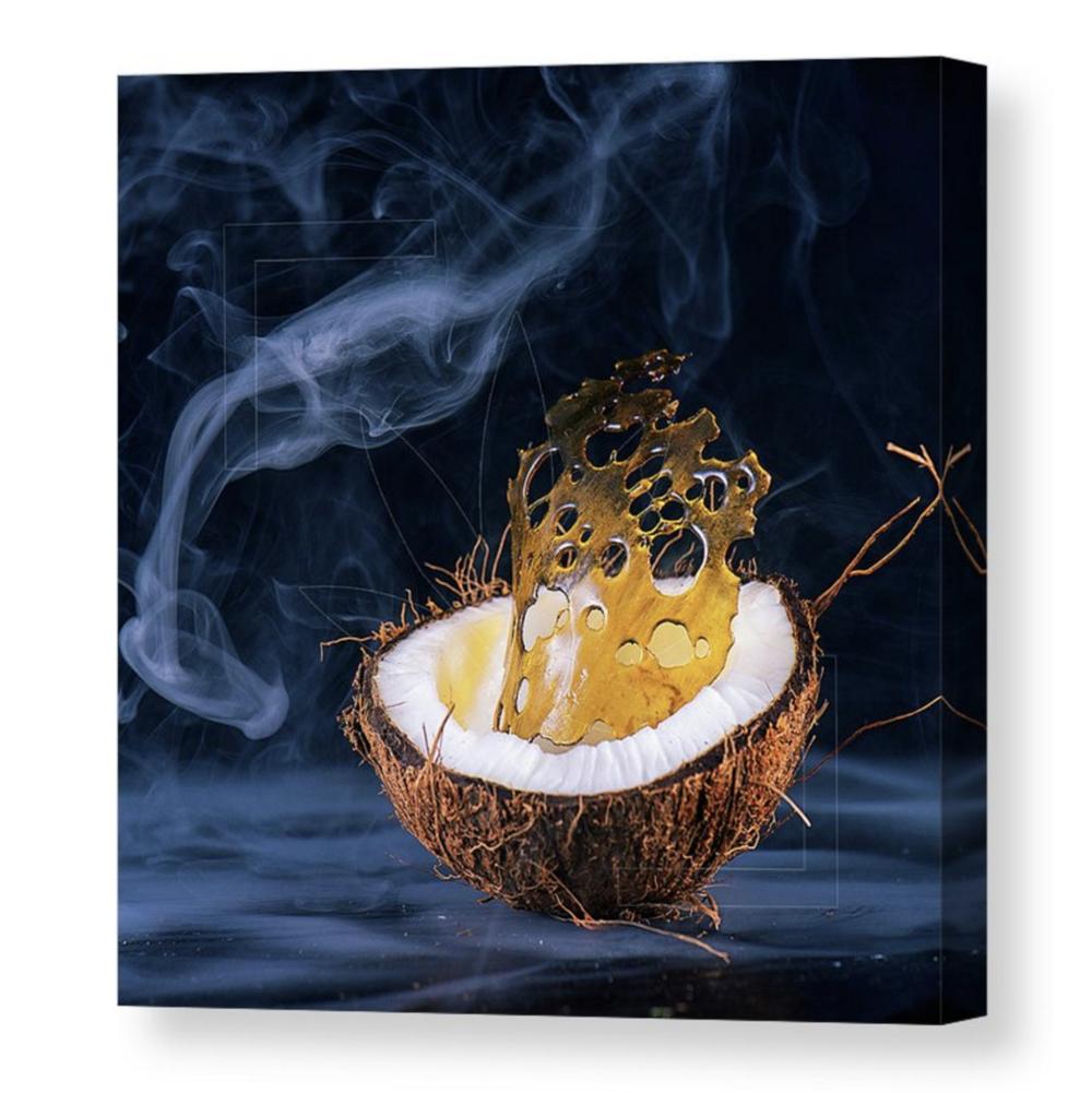 """CocoShatter"" Canvas / $70 - $150"
