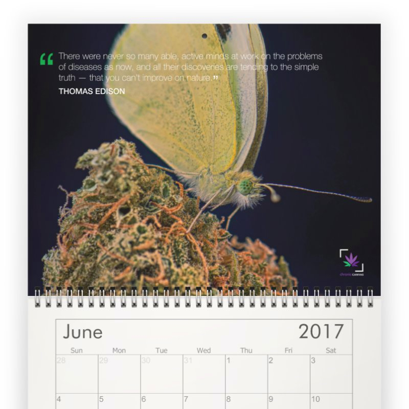 Chronic Quotes Wall Calendar 2017 / $25
