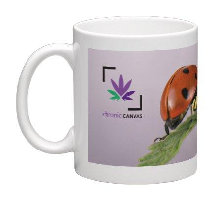 Lady Sprout Mug / $25