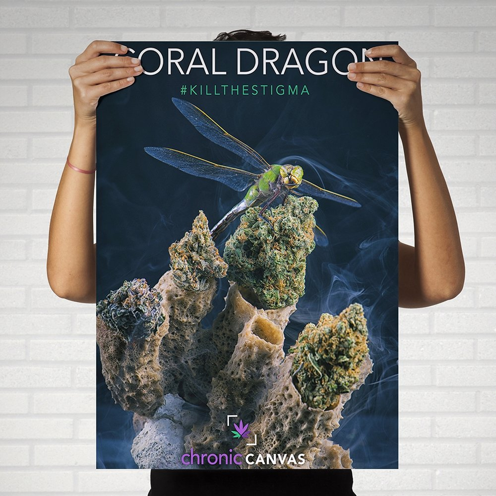Coral Dragon Poster  /  $25 - $35