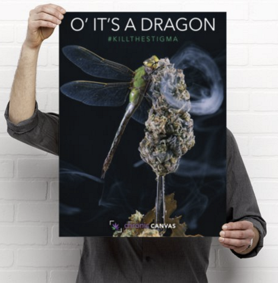 'O' it's a Dragon Poster  /  $25 - $35