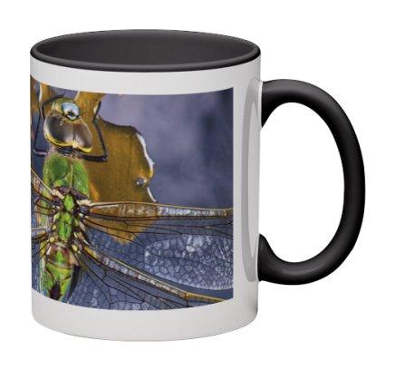 Dragon Shatter Mug / $25