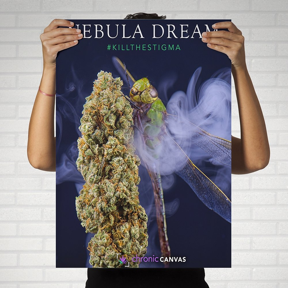 Nebula Dream Poster  /   $25 - $35