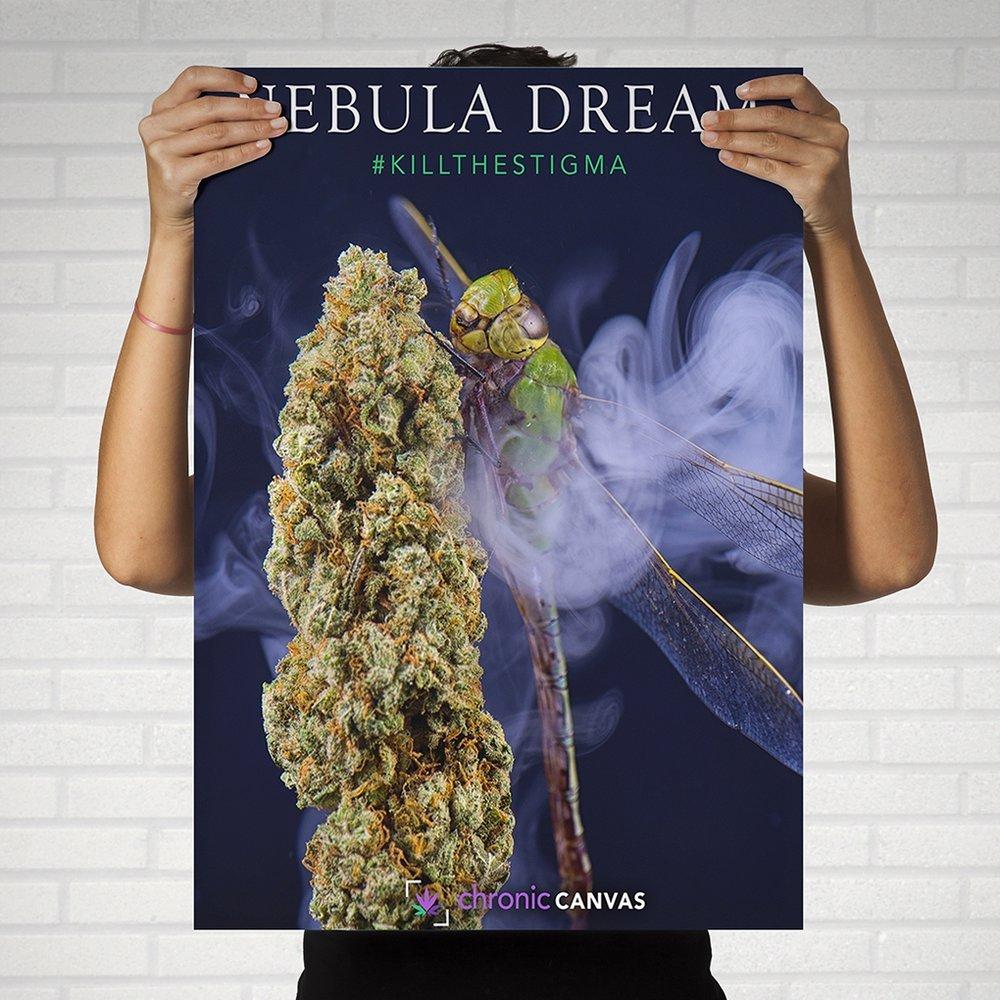 Nebula Dream Poster / $25 - $35