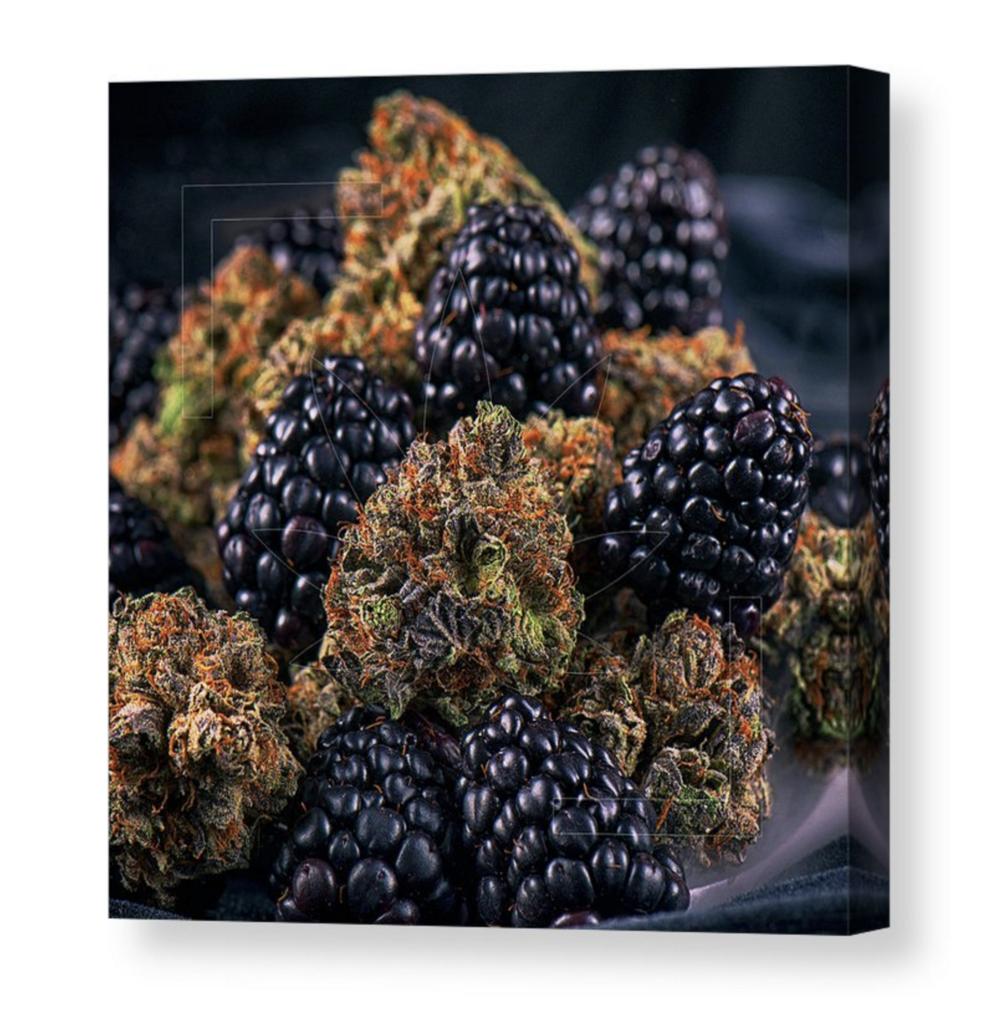 """""""Noir Parfait"""" Canvas / $70 - $150"""