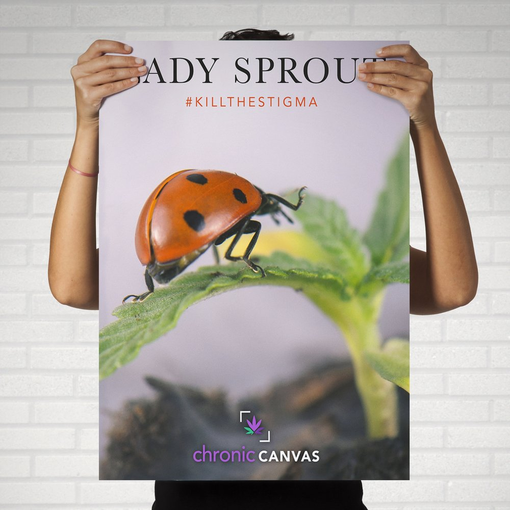 Lady Sprout Poster / $25 - $35