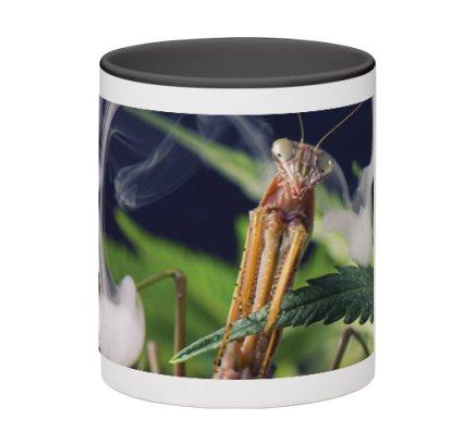 mantis-mug2.jpeg