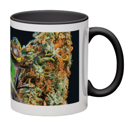dragon-mug3.jpeg