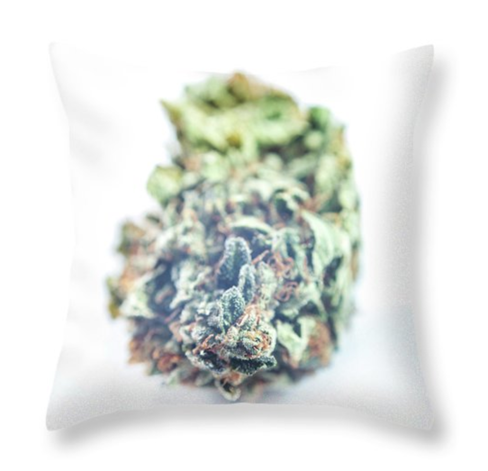 new-beginnings-pillow-white.png