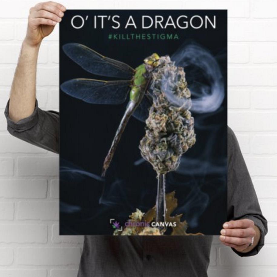 O it's a Dragon Poster / $25 - $35