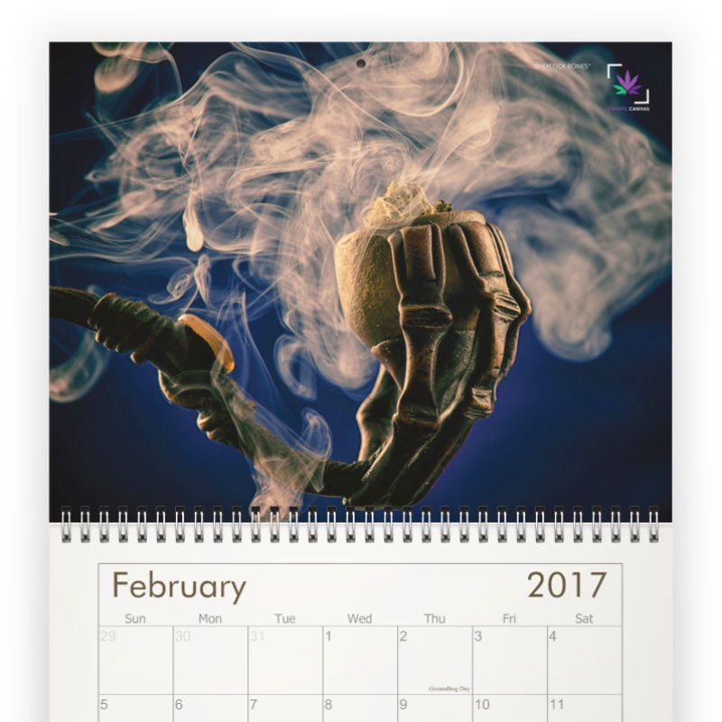 Chronic Canvas Classic Wall Calendar 2017  /  $25