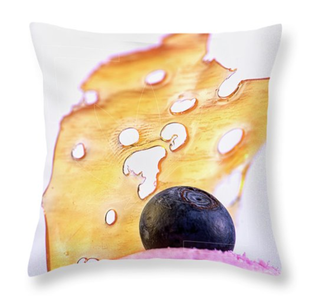 ShatterBerry Pillow/  $35