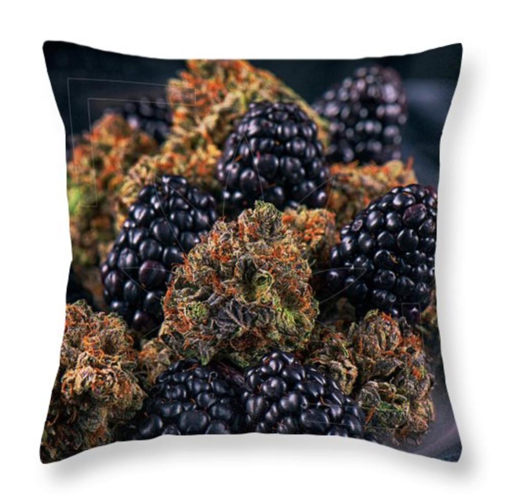 Noir Parfait Pillow / $35