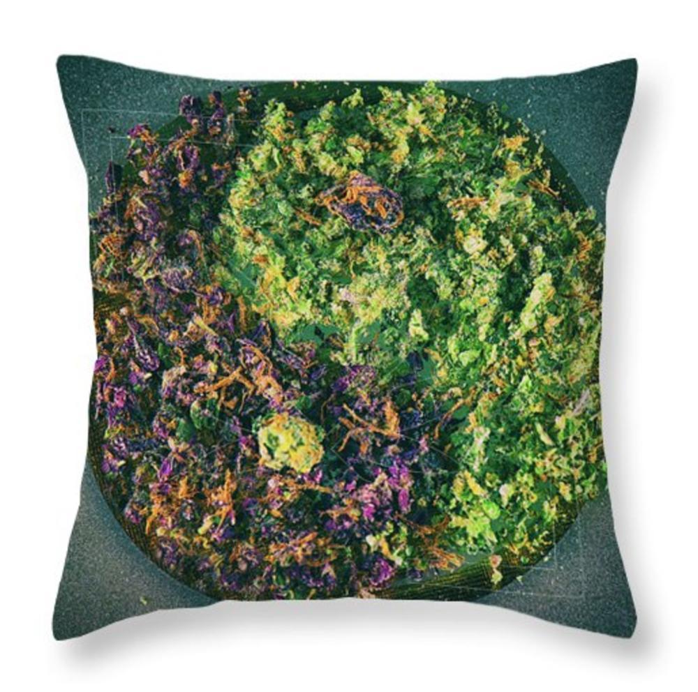Tao HC Pillow / $35