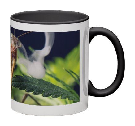 Mantis Clouds Mug  /  $25