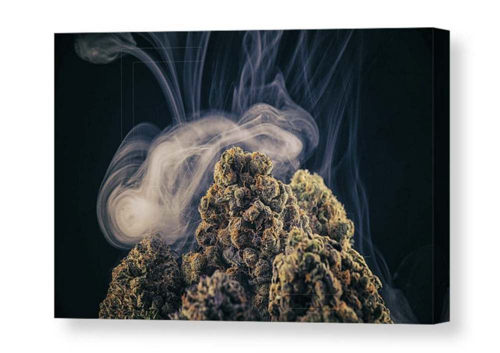 """Maui Mountain Kush"" Canvas / $125 - $250"