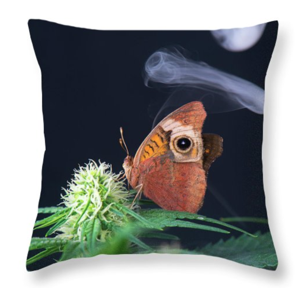Butterflower Pillow
