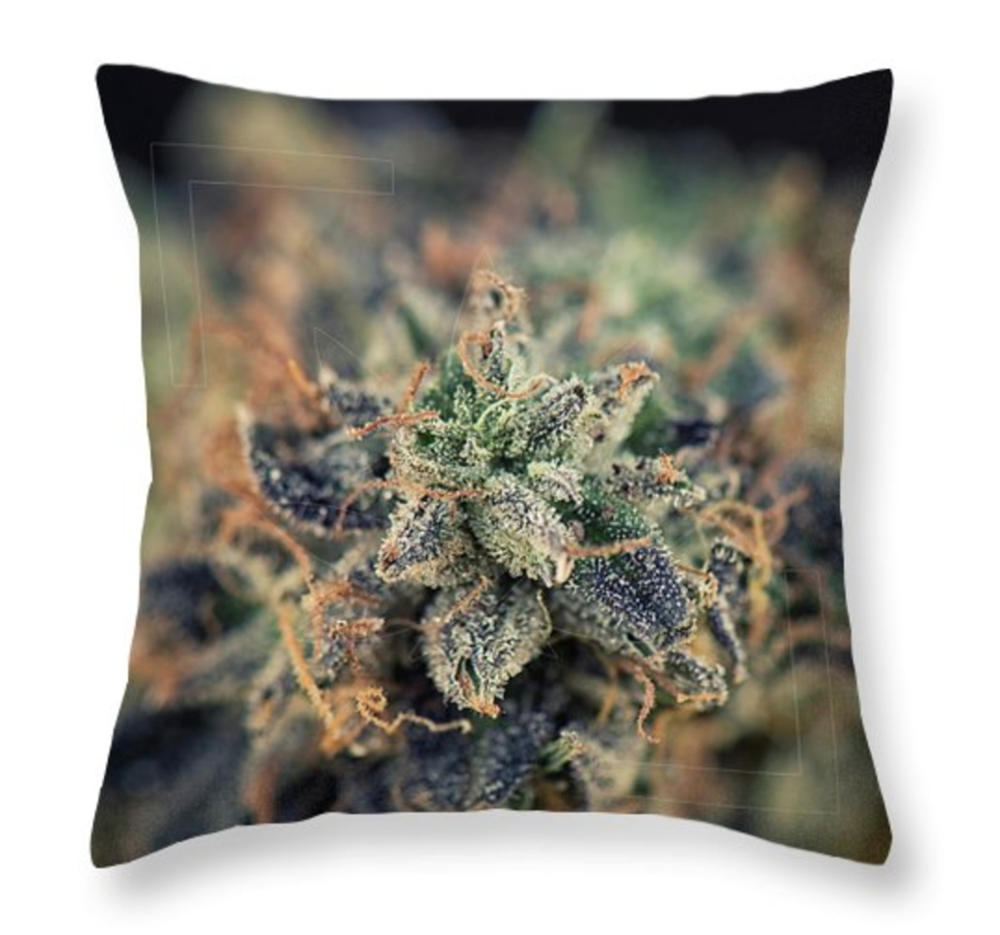 Green Star Pillow