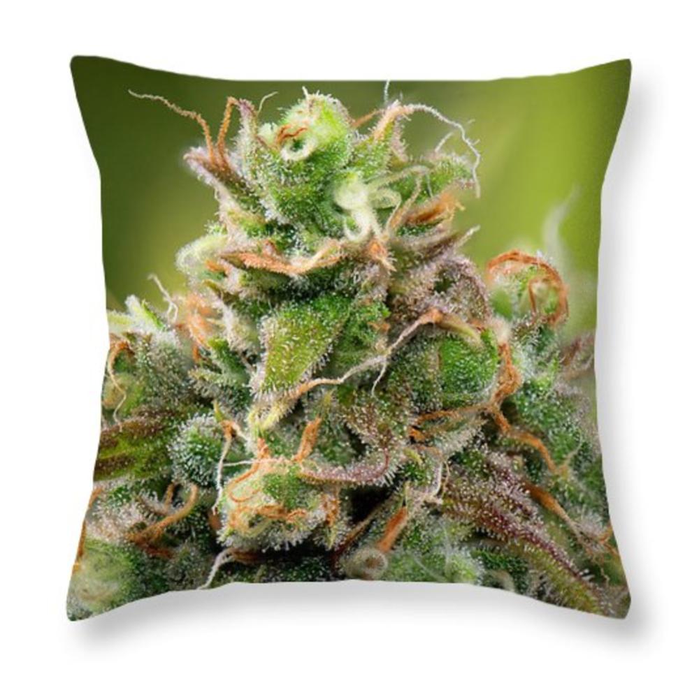Siberian Rose Pillow