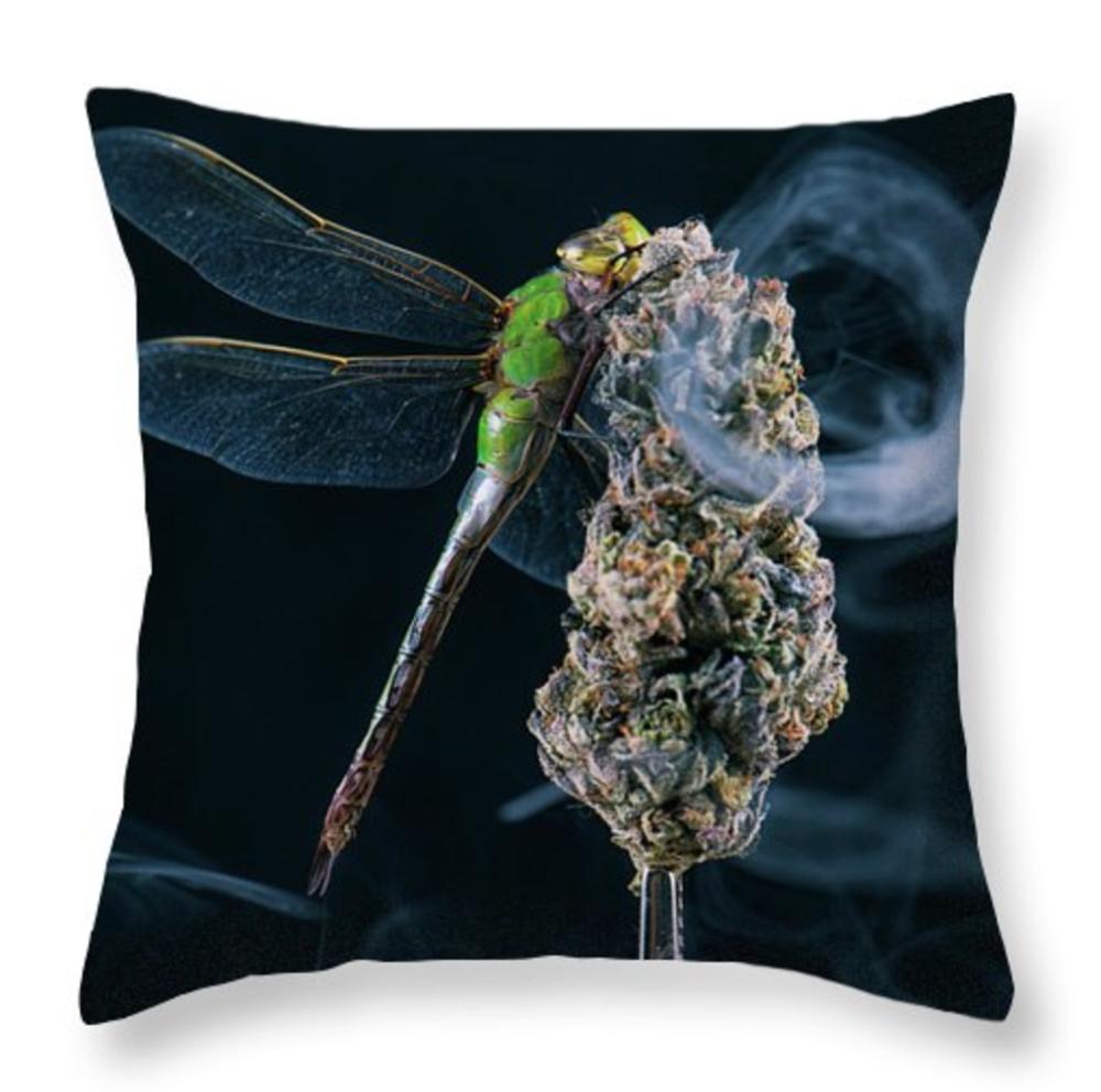 O it's a Dragon Pillow