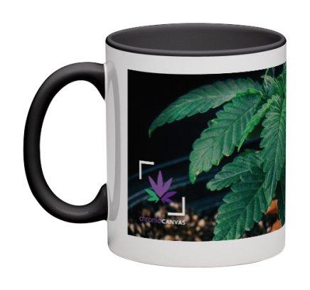 Canna Plant Mug