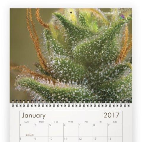 calendar-1C.jpeg