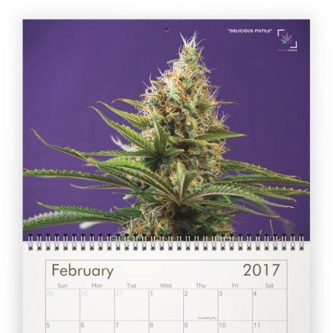 calendar-2C.jpeg