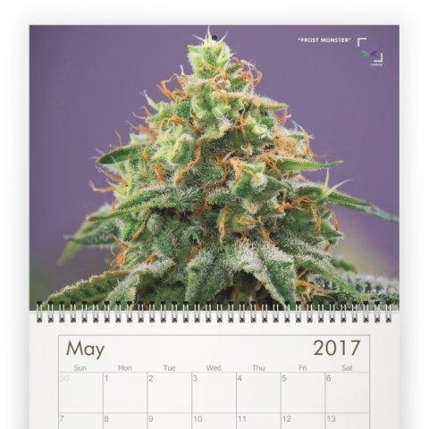 calendar-5C.jpeg