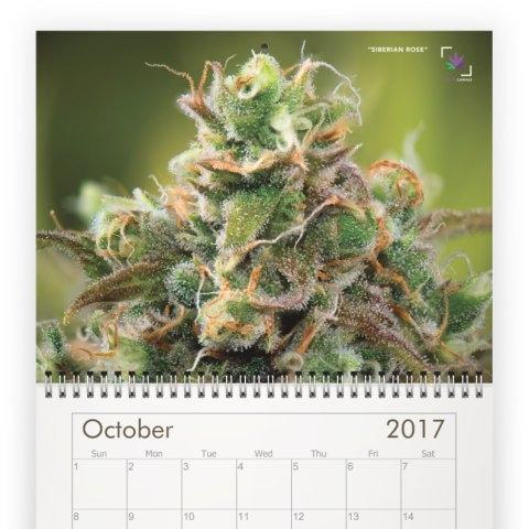 calendar-10C.jpeg