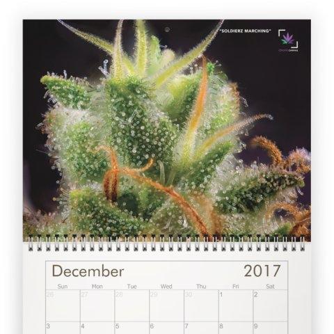 calendar-12C.jpeg